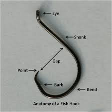 Anatomy of a fish hook