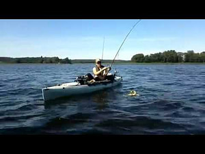 Hobie with man and fish