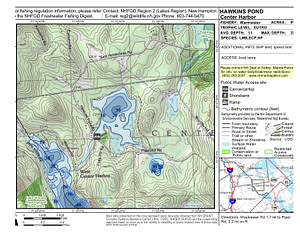 Hawkins Pond Topo Map (1)