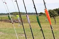 rods & lures