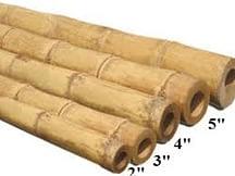 bamboo lineup